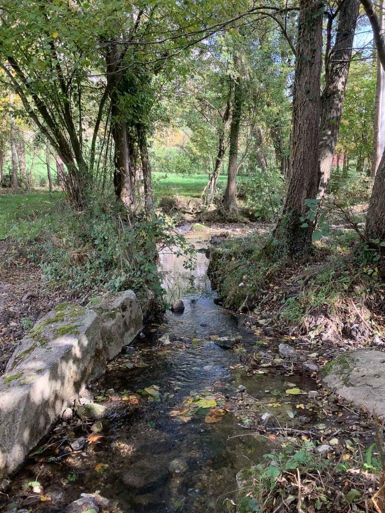 Ruisseau de Saint Pierre - commune de Surba